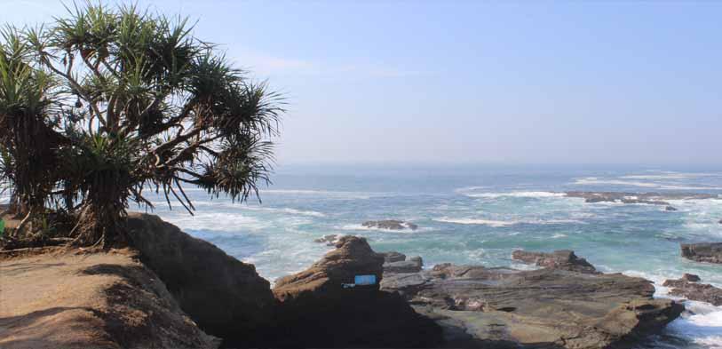 wisata jember, pantai papuma, tanjung papuma