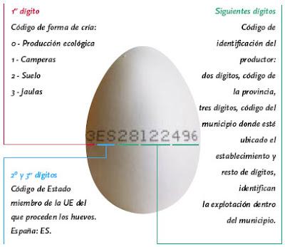 Explicación código de la cáscara del huevo