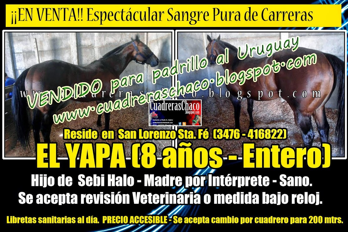 venta yapa 25/-7-14