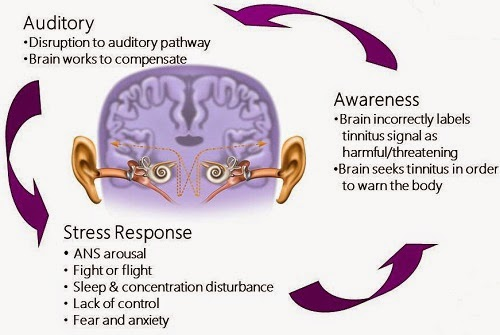 Some  Ways Tinnitus Is Evaluated