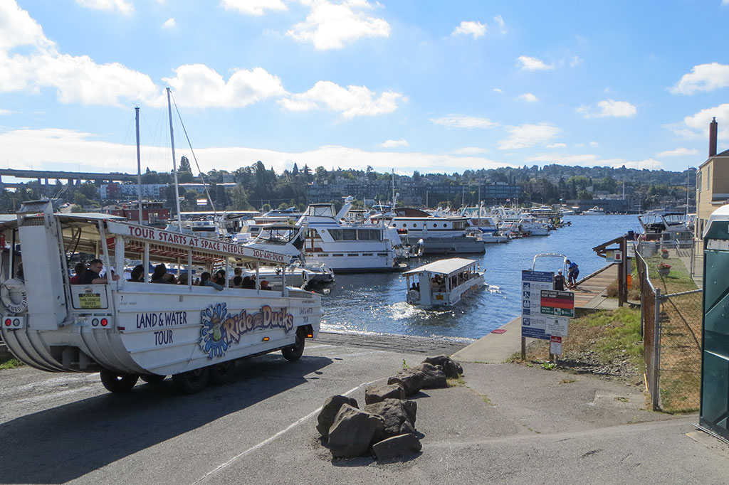 Ducks Entering Lake Union