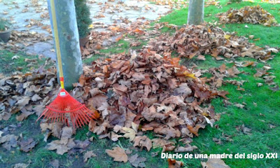 colores ocres rastrillar autumn leaves