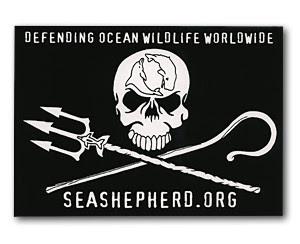 Si los mares mueren, nosotros moriremos