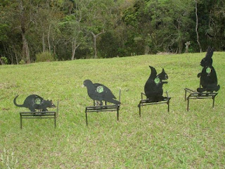 Primeiro conjunto de alvos de Field Target do Brasil