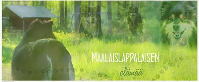 http://maalaislappalaisenelamaa.blogspot.fi/