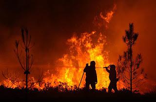 Ourense, incendio, fuego, pirómanos