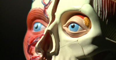 Replika Kepala Mausia