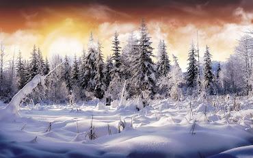 #11 Winter Wallpaper