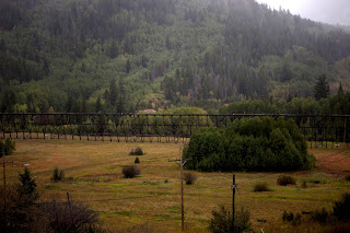 Homes for Sale in Black Forest, CO. Black Forest Realtor Ben Townsend