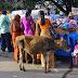 Wander Photo:  Brave in Bangalore
