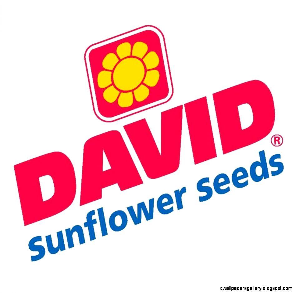 DAVID SunflowerSeeds EatSpitHappy  Twitter