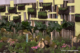Vertical Gardens with upcycled palettes and Wooly Pockets