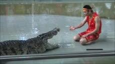 Il rentre sa tete dans la gueule d'un crocodile