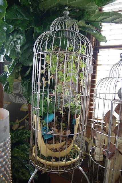 Nest Full Of Eggs Spring 13 Ideas House