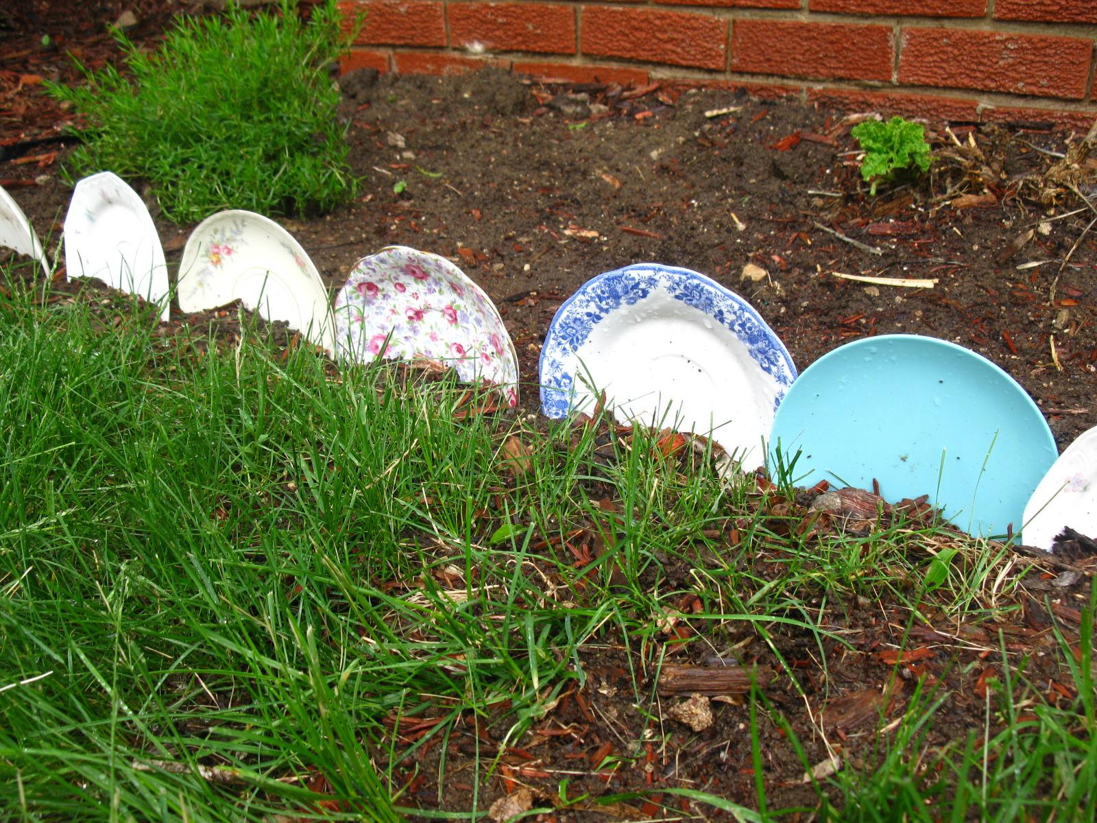 My sparrows nest shabby chic garden for Flower edging