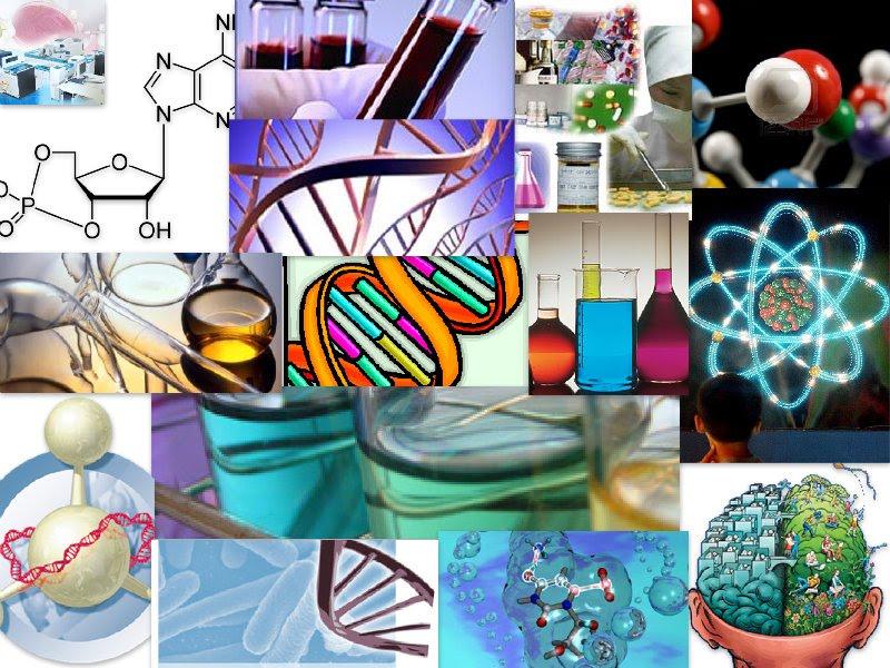 Quimica organica en el entorno humano quimica organica for La quimica de la cocina