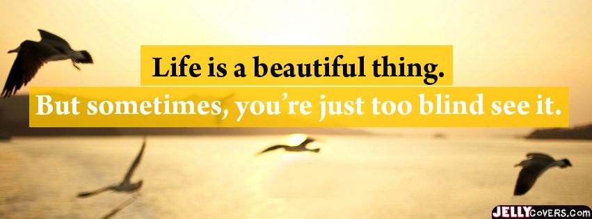 Beautiful Life Facebook Timeline Fb Cover
