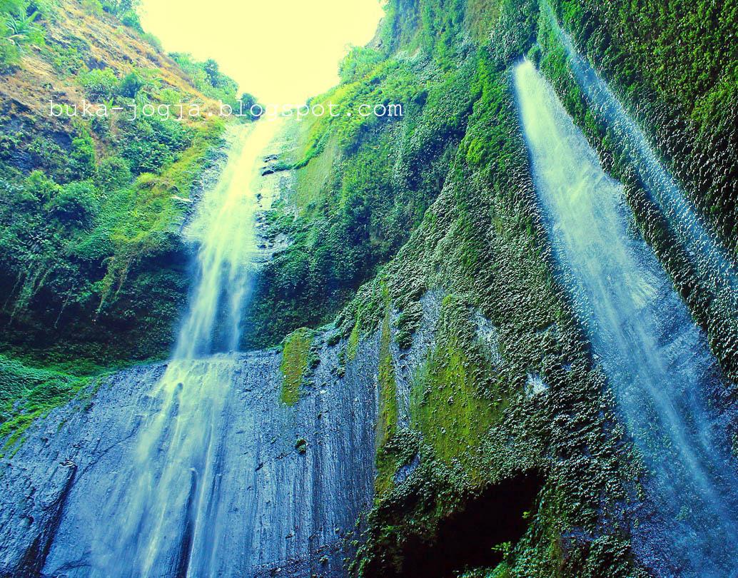 buka jogja: Air Terjun Madakaripura, Surga Yang Tersembunyi