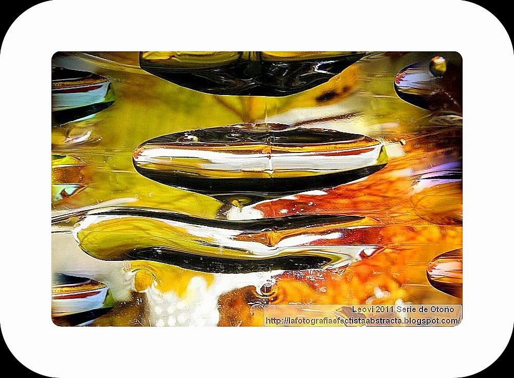 Foto Abstracta 3245  Otoño Maduro - Mature Autumn