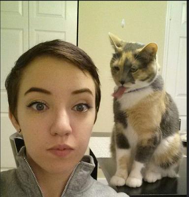 Kumpulan Foto Kucing yang Benci Selfie