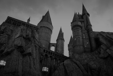 Jodeos muggles, me voy a Hogwarts.