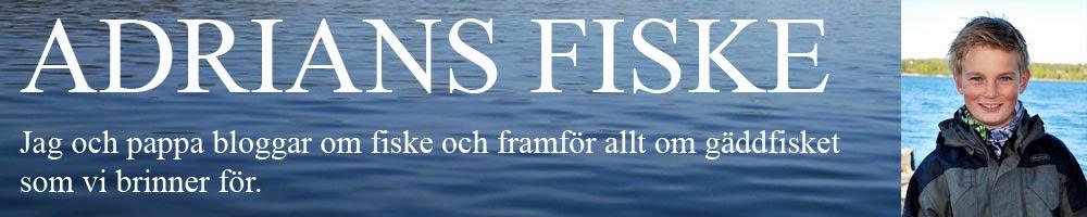 ADRIANS FISKE
