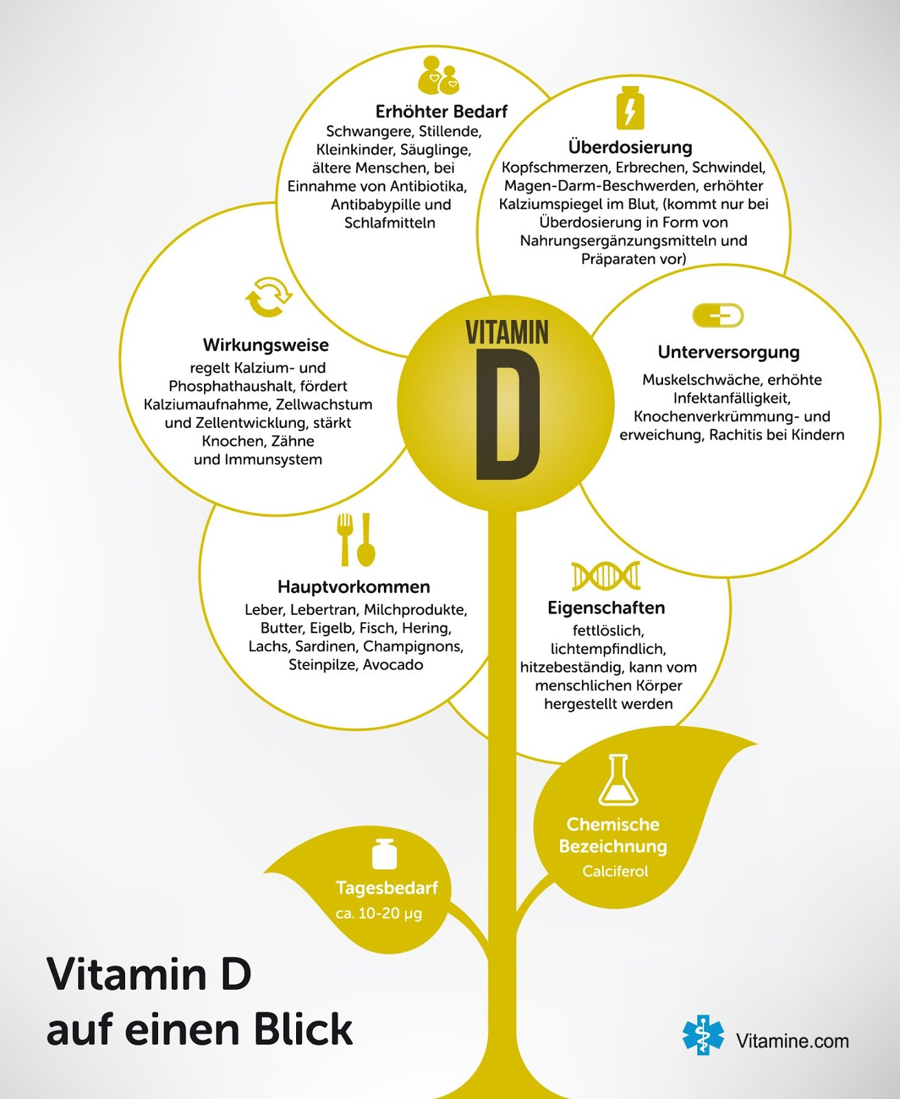 vitamin d darm