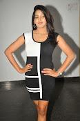Pavani Reddy Glamorosu Photo shoot-thumbnail-19