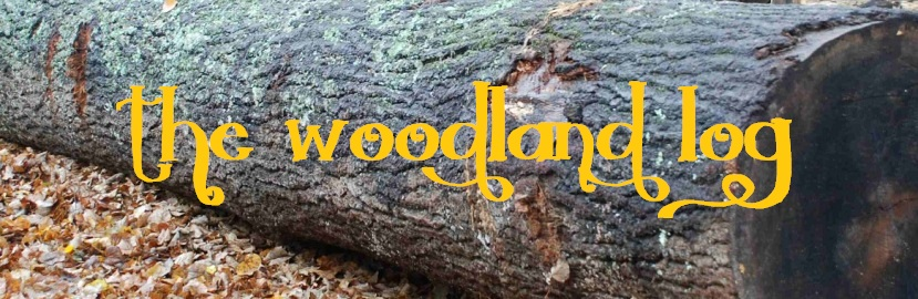 The Woodland Log