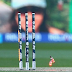 New Zealand set 184 Target to Australia in the World Cup Cricket Final 2015