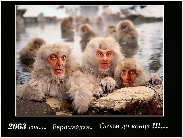 """Запад или """"Нужные Фашисты"""" с Евромайдана"""