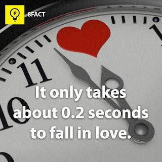 facts , It only takes about 0.2 seconds to fall in love.