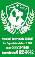 CLINVET DRACENA