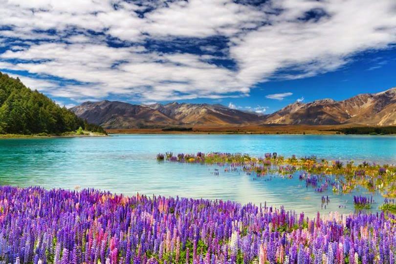 Lake Tekapo (Nuova Zelanda)