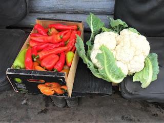 24 сентября, перцы и цветная капуста