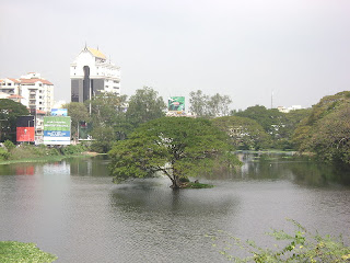 Pond_at_Chetput1.JPG