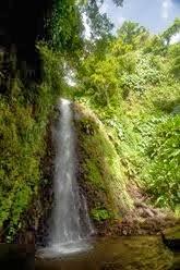 Bujna i tropikalna Saint Vincent