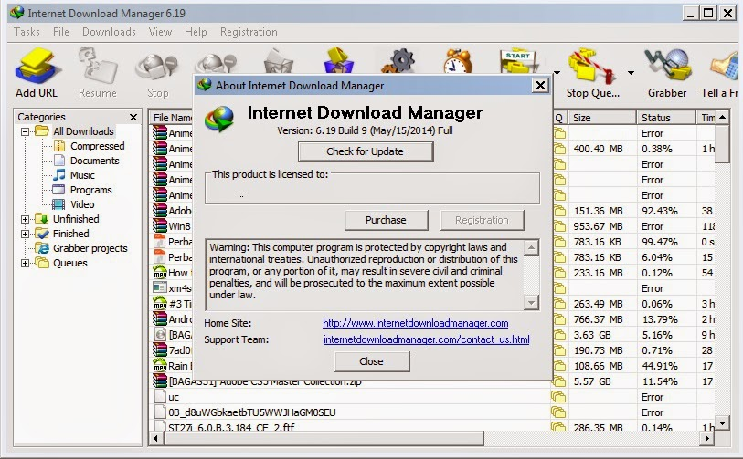 Internet Download Manager 6.19 Build 9 Terbaru Full Patch.