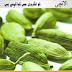 Cardamom Meaning In Urdu