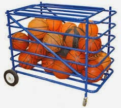 Basketball carrier