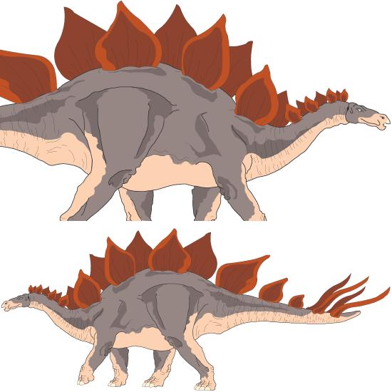 Estegosaurio dinosaurio vector