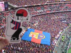 El catganer dins de l'estadi de Wembley.