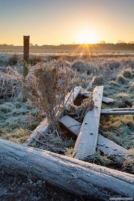 Ditton Meadows sunrise