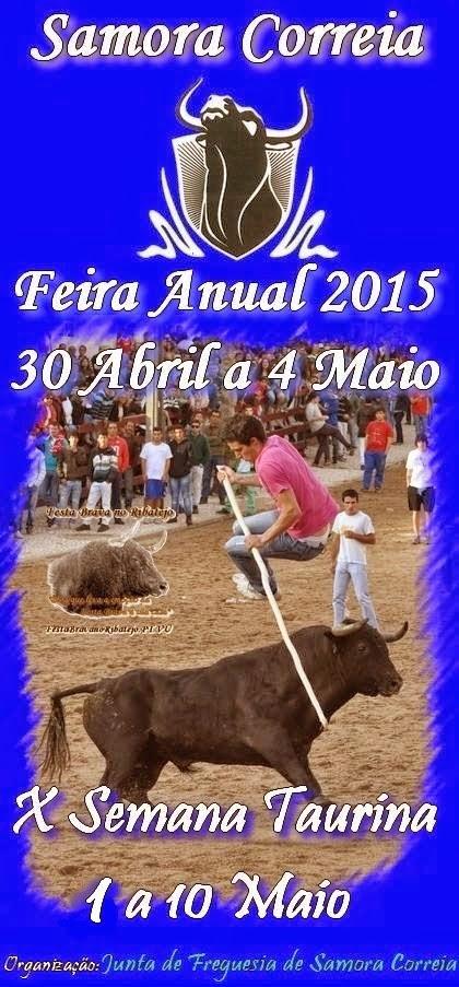 Festa Brava em Samora Correia 2015