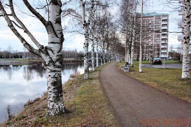 Oulu Toivoniemi