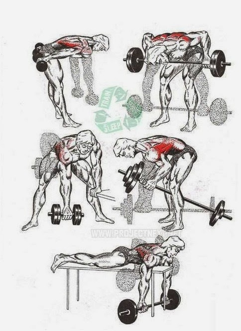 Back Workout Bodybuilding Workouts At Home