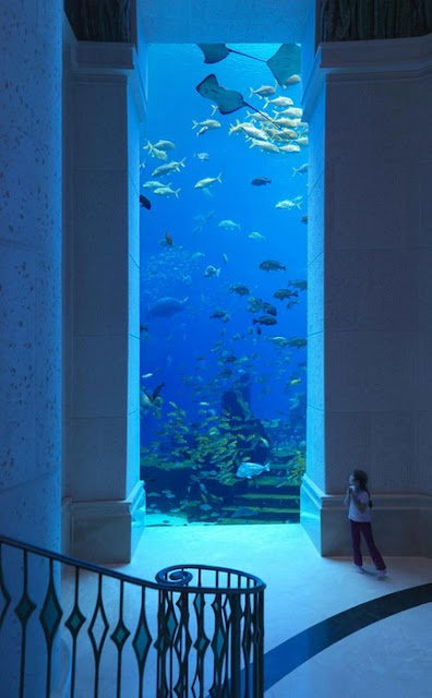 Underwater hotel in Dubai Underwater Hotel Room At Night