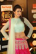 Nikki Galarani sizzing at iifa utsavam-thumbnail-18