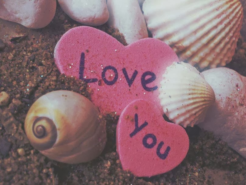 love-for-you-pink-color-shell-image