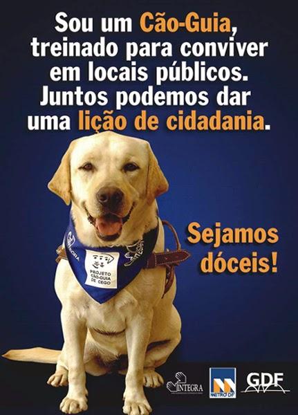 Cão Guia Brasil
